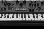 Modal announces 008, 8-voice discrete analog synthesizer