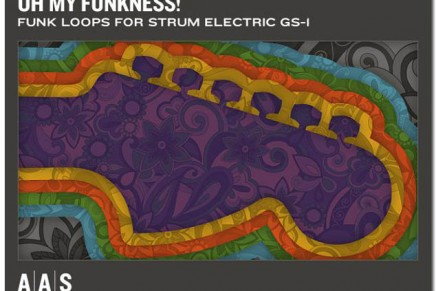 Oh My Funkness! loop bank for Strum Electric GS-1